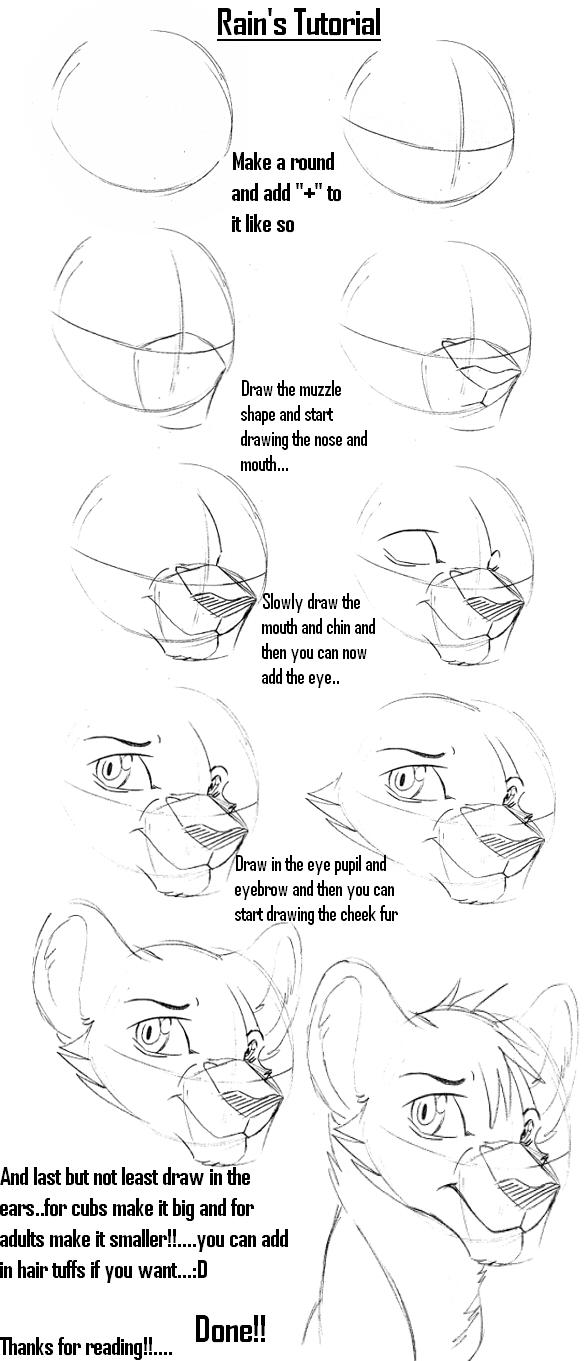Big cat's head tutorial by Rain-Strive