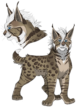 Bobcat Adopt Auction: CLOSED