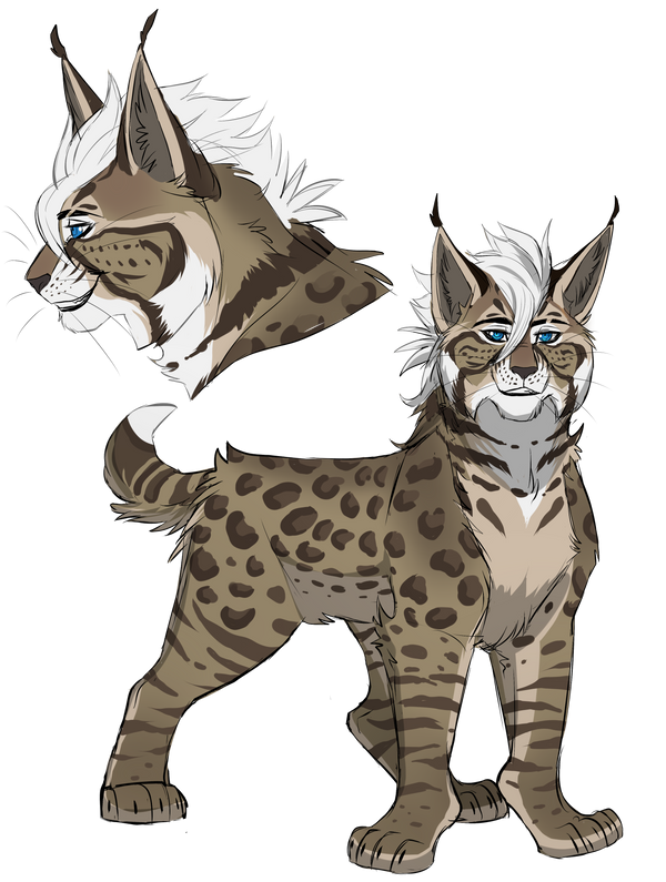Bobcat Adopt Auction: CLOSED by Rain-Strive