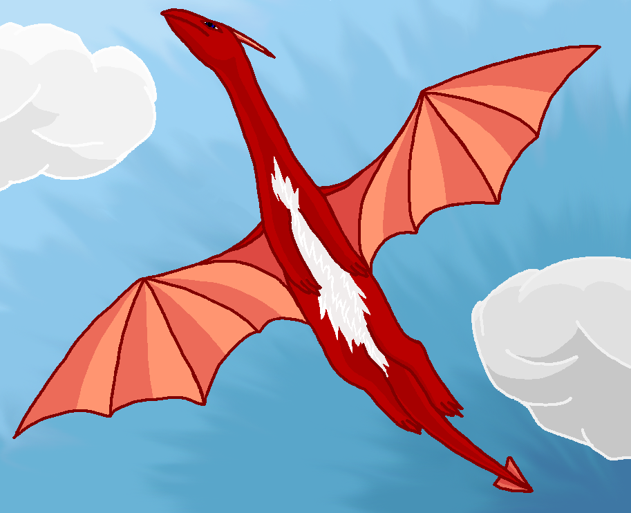 Flying dragon - Coloration