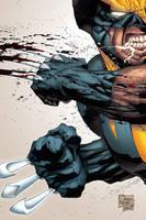 Wolverine: Colors by garstu