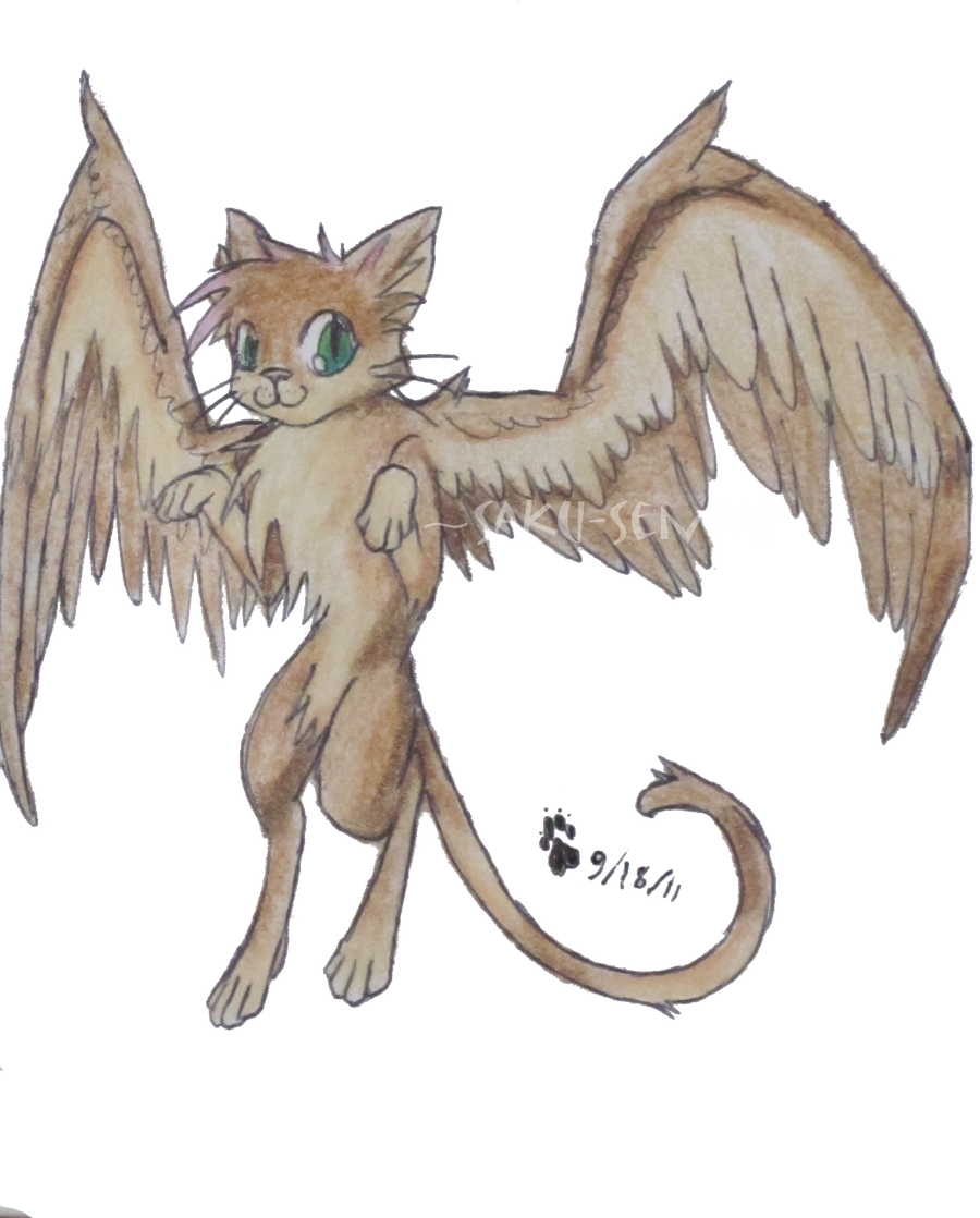 Blue Winged Warrior Cats Free To Use