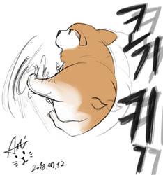 Corgi Kick!!!!! by Seon-U