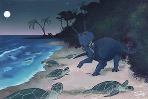 Don't Disturb the Turtles! - Skytrail PA