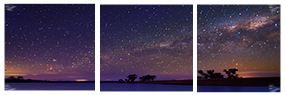STARRY NIGHT by Amicus-Nocte