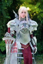 Mordred Armor Fate Cosplay by DrosselTira