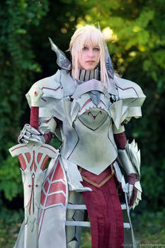 Mordred Armor Fate Cosplay