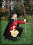 Halloween Witch VII by Eirian-stock