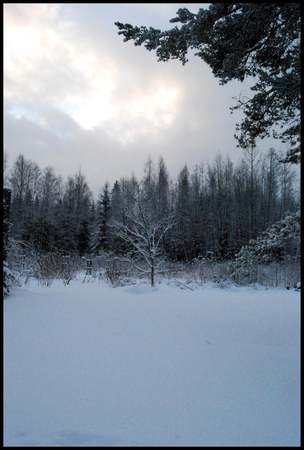 Winter Wonders I by Eirian-stock
