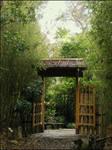 BG Gate