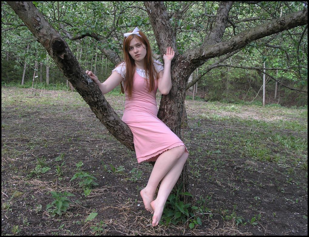 Appletree VI by Eirian-stock