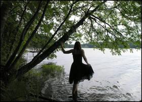 Black Swan I by Eirian-stock