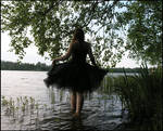 Black Swan IV