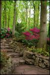 BG Stairs