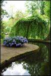 BG Hyacinth Pool