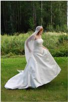 Wedding II by Eirian-stock