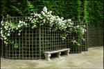 BG Garden Bench