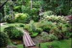 BG Garden of Serenity