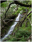 Glendalough Waterfall III