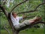 Tree Climber III