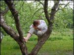 Tree Climber IV