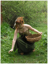 Basket III by Eirian-stock