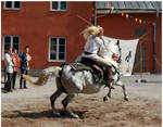 Medieval Festival 44