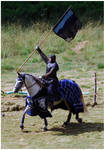 Knight of Camargue III