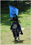 Knight of Camargue IV