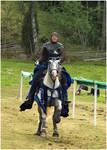 Knight of Camargue IX