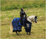 Knight of Camargue X