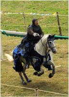 Knight of Camargue XI by Eirian-stock