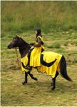 Lady Knight II