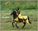 Lady Knight III