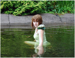 Lady Of The Lake I by Eirian-stock