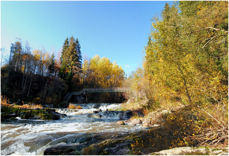 BG Autumnal II by Eirian-stock