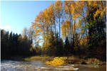 BG Autumnal VII