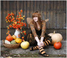 Fairy And Her Pumpkins by Eirian-stock