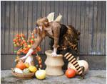 Halloween Fairy