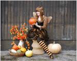 Time Of Pumpkins