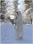 Winter Wanderer I