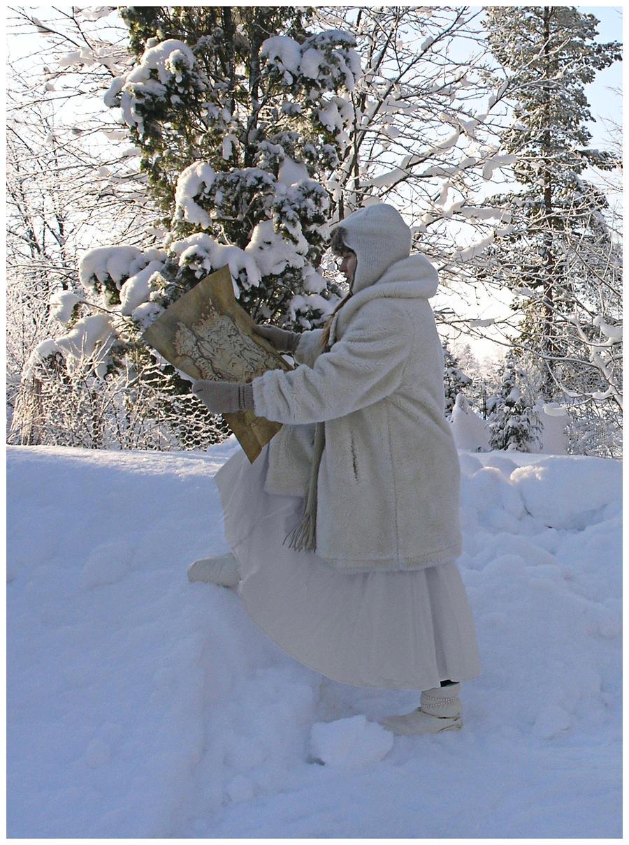 Winter Wanderer II by Eirian-stock