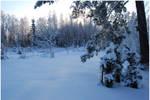 BG World Of Snow VI