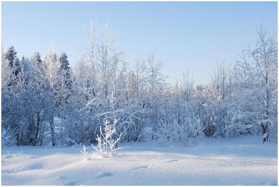 BG World Of Snow XI by Eirian-stock