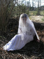 Annlise - Bridal Veil by Eirian-stock