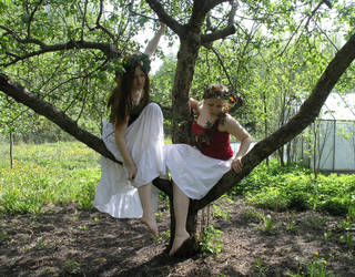 Like Sisters - In A Tree by Eirian-stock