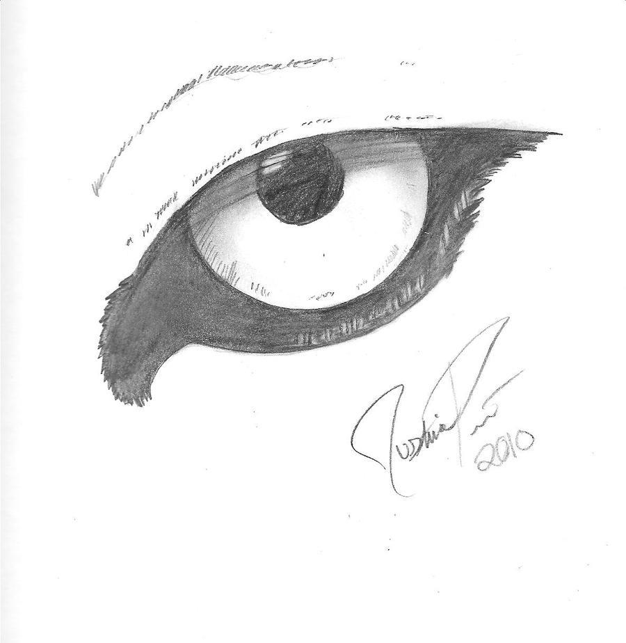 anime wolf eye drawing: Wolf Eye By KARKRII On DeviantArt