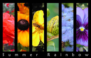 Summer rainbow by chain