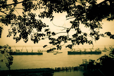 watching the harbour by incognita-terra