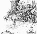 Vahsi Doga 'Wild'... by halil-art